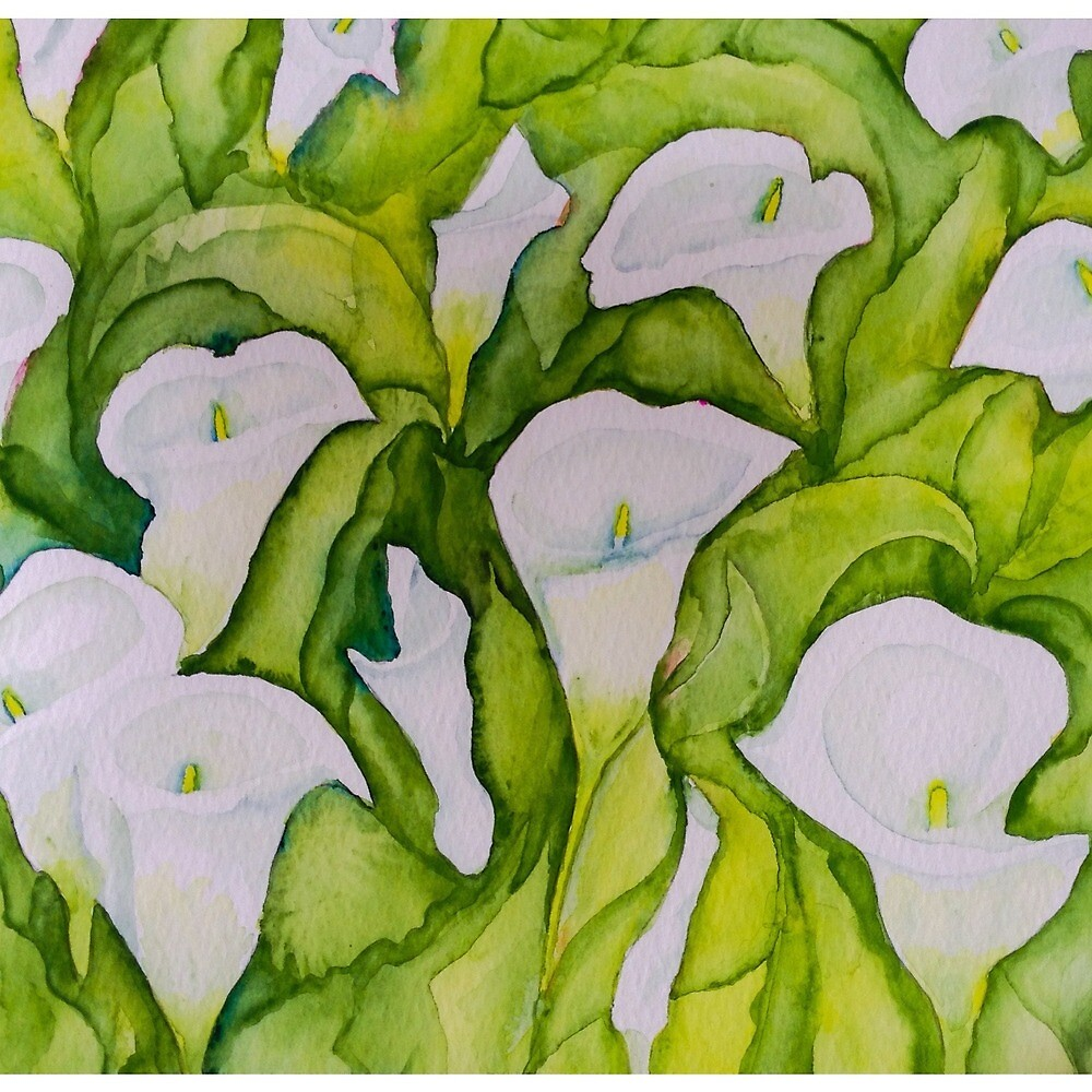 Arum Lillies by Valgibbons