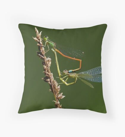Complicated Love Throw Pillow