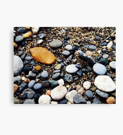 Pebbles at Point Pelee, Ontario Canvas Print