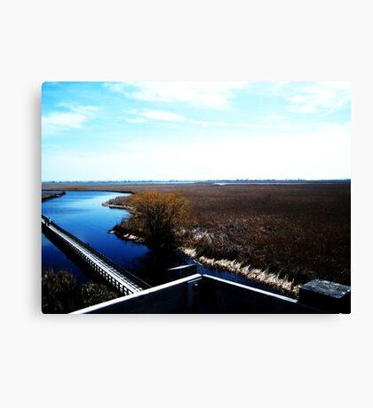 Point Pelee, Ontario- II Canvas Print