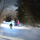 Family Day Skating On The Pond by jules572