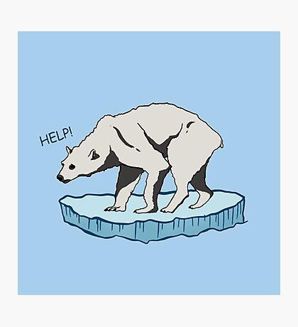 Polar Bear - Help! Photographic Print