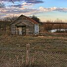 Vacant in Hill County Texas by Susan Russell
