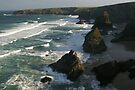 National Trust at Bedruthan Steps by Cliff Williams