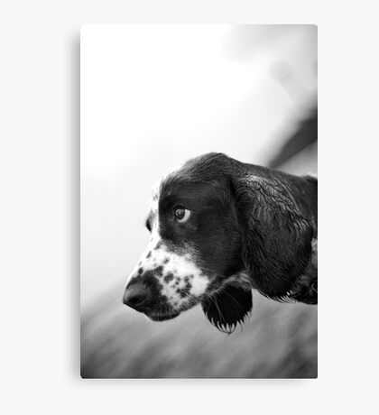 Sad Eyes Canvas Print