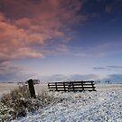 Into Great Wide Open by JurrPhotography