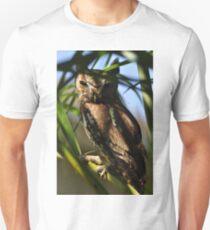 Eastern Screech Owl, As Is T-Shirt