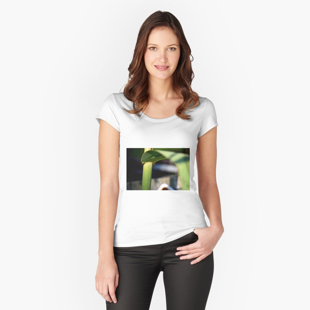 green leaf, green stalk Women's Fitted Scoop T-Shirt Front