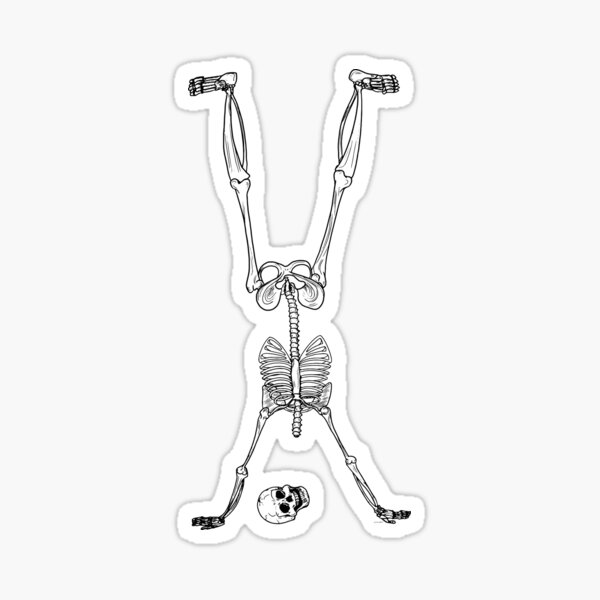 Phalanx Stand - Halloween Party Skeleton Sticker