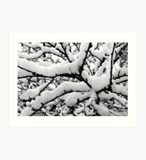 winter tree abstract Art Print