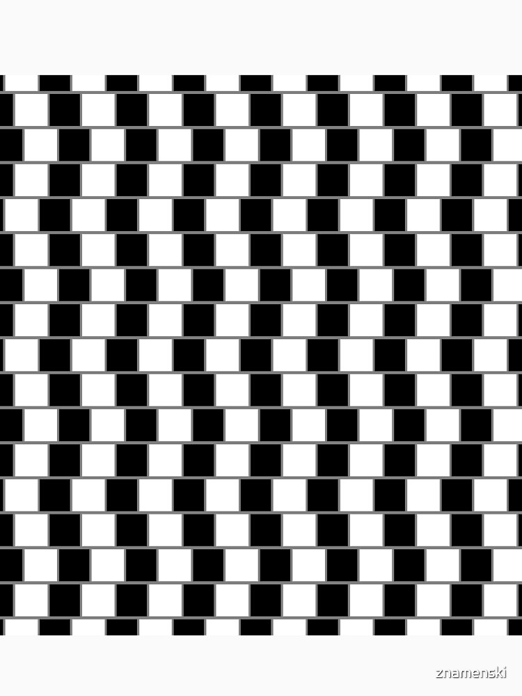 Visual Illusion #VisualIllusion Optical #OpticalIllusion #percept #reality by znamenski