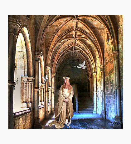poetry in the cloister... Photographic Print