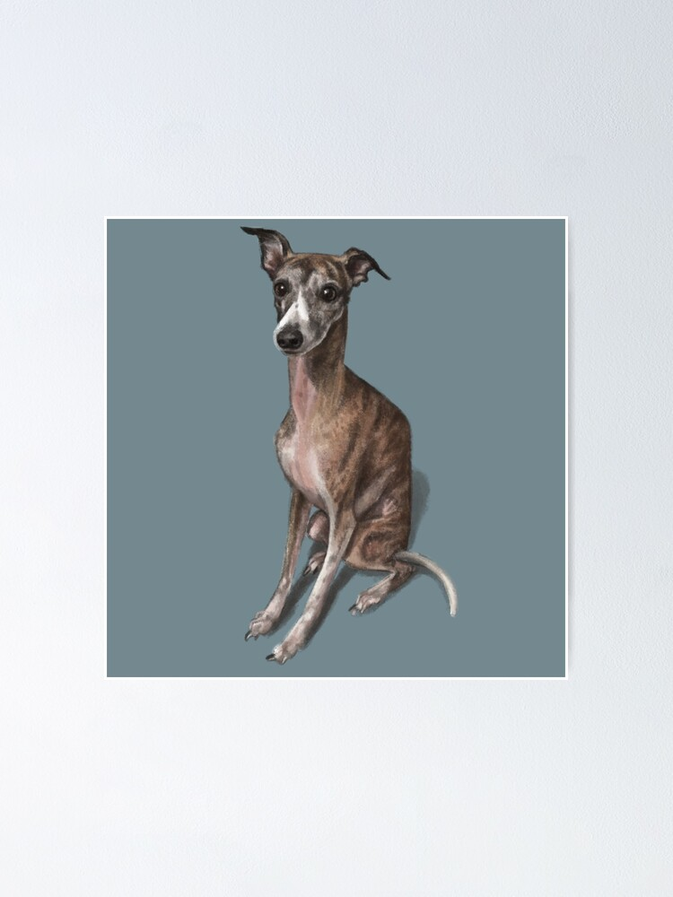 Alternate view of The Whippet Poster