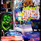 Melbourne Alley  by Troy Slater