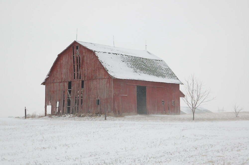 Rustic Barn -- Warsaw, Indiana by tpjmah