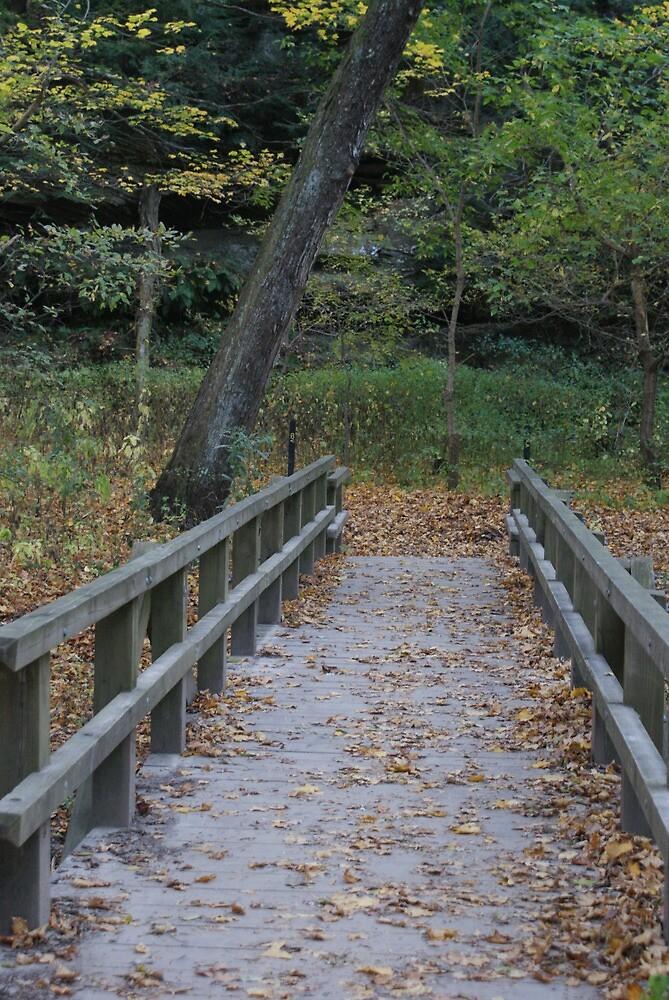 bridge by kh1042