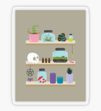 Witch Shelves, The Other Wall Transparent Sticker