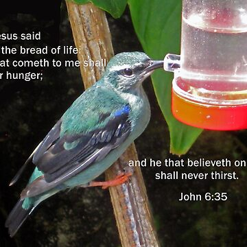 Believeth on Jesus by chinet