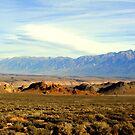 """""""Owens Valley"""" by Lynn Bawden"""