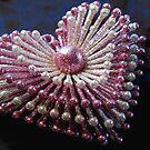 Pink Sparkly Heart by WildestArt