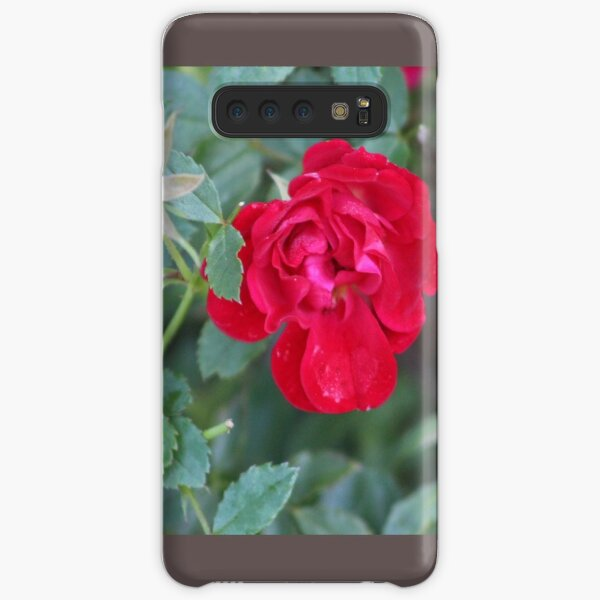 Red roses Everywhere Samsung Galaxy Snap Case