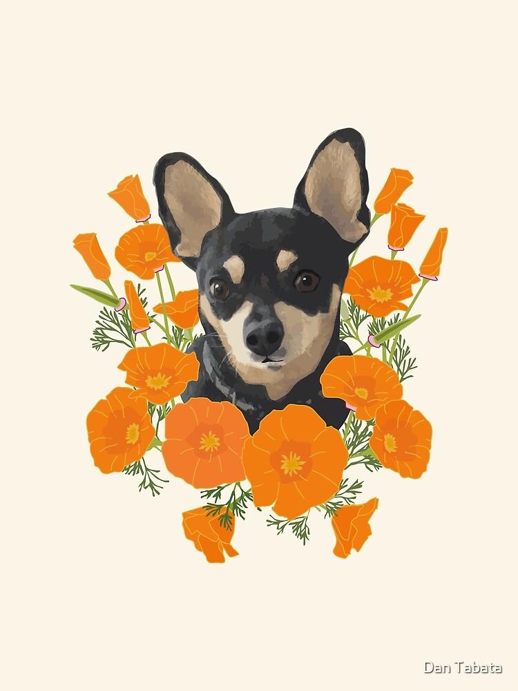 Poppy Dog by Dan Tabata