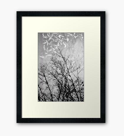 Nothing Written in the Sky Framed Print