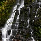 Nelson Falls 2 by Andrew Wilson