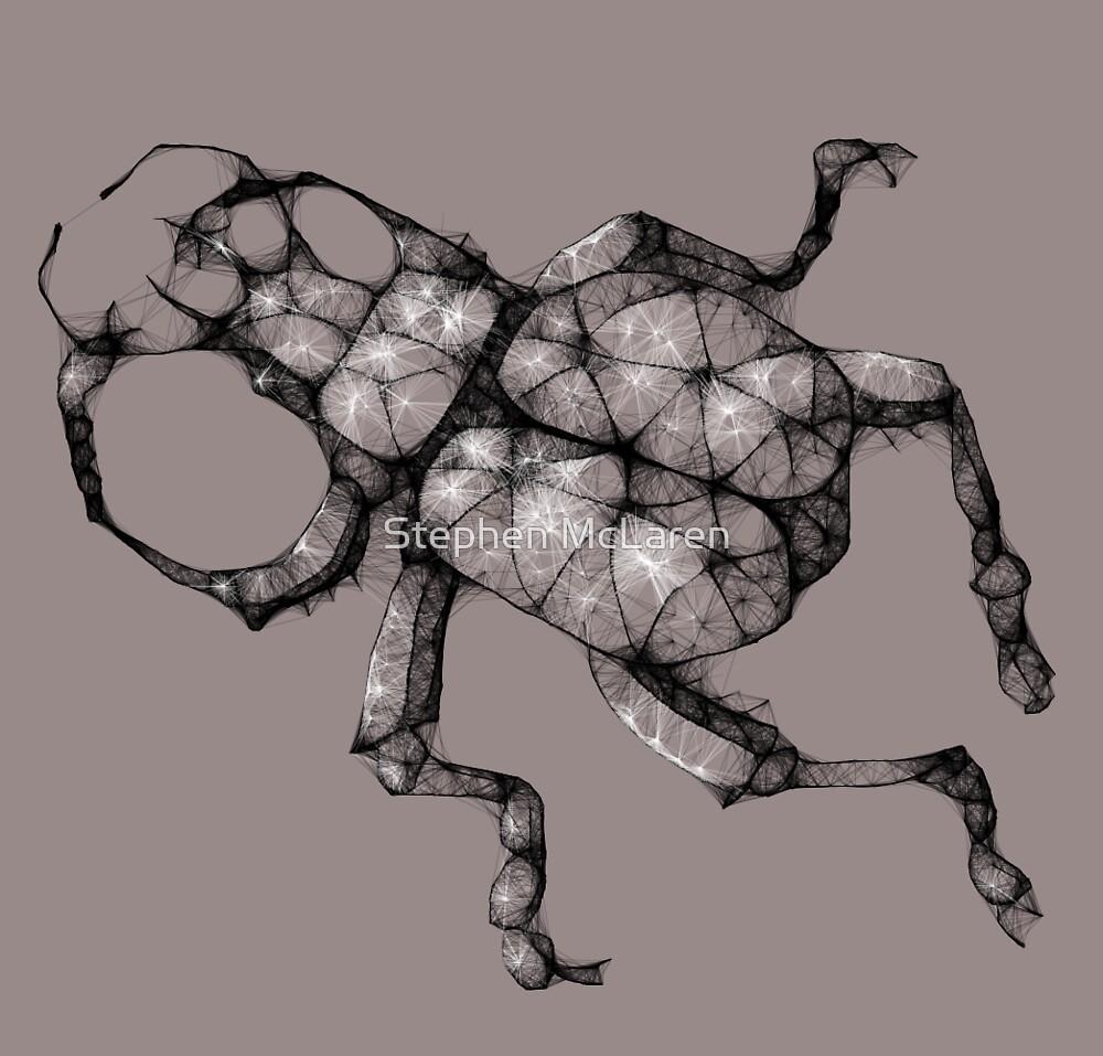 scribbler beetle by Stephen McLaren