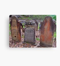 The Old St Albans Cemetery..16-1-11.. Metal Print