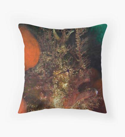 Tasseled Anglerfish Throw Pillow