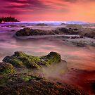 Noisey Coast! by Petehamilton