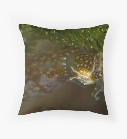 Southern Pygmy Squid Throw Pillow