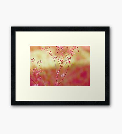 In the lawn: Explore Featured Work, Hall Of Frame, Got 8 Featured Works Framed Print