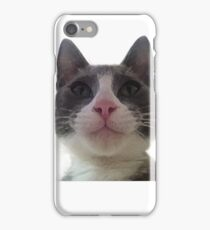 Gracie Kitty iPhone Case/Skin