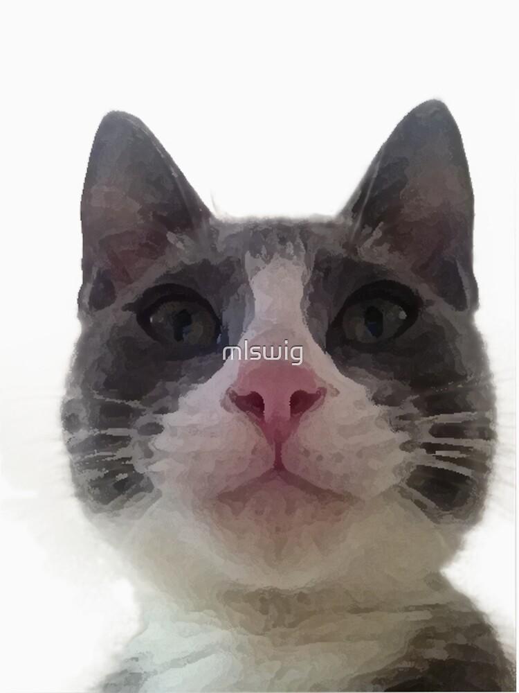 Gracie Kitty by mlswig