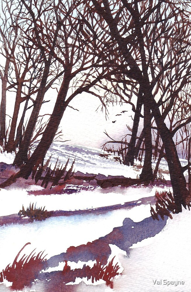 Winter Trees by Val Spayne