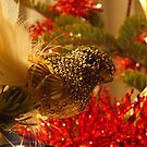 It came to eat off the christmas tree by Cosmin Roszkos