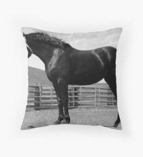Black Beauty - Percheron Mare Throw Pillow