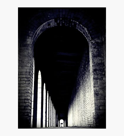 Vaulted Photographic Print
