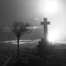 Misty Grave Yard by Nick Martin
