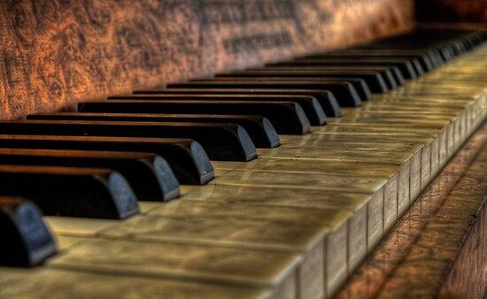 Schiedmayer Piano 2 - HDR  by Scott Sheehan