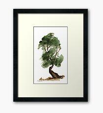 Little Tree 122 Framed Print