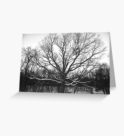 Ghost of Winter Greeting Card
