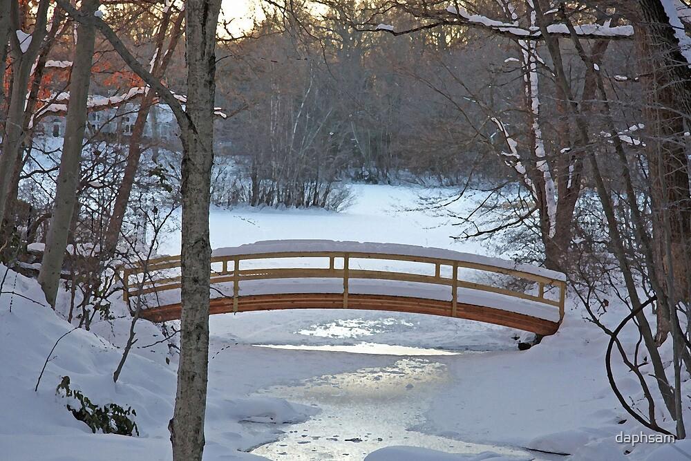 Winter Bridge by daphsam