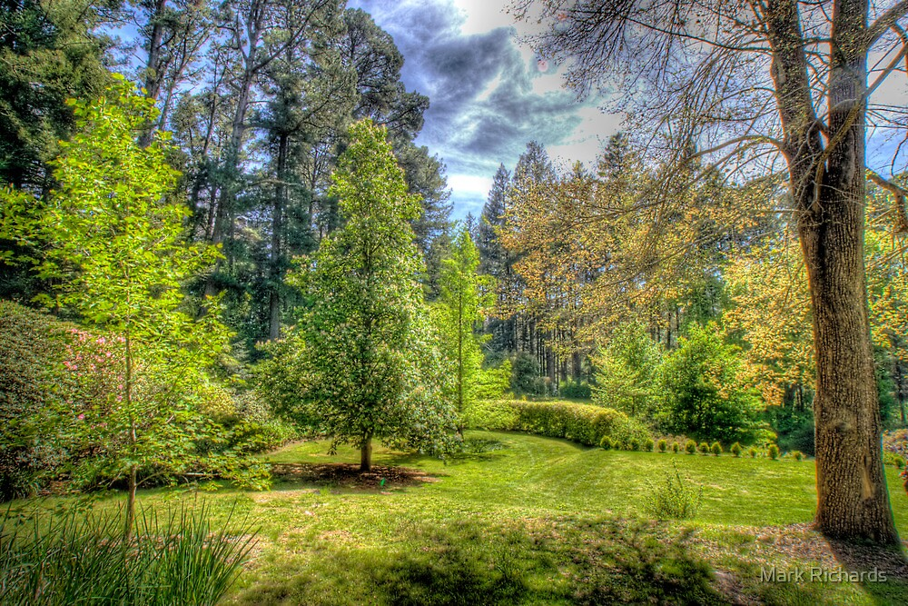 """Treescape - """"Wairoa"""", Private Gardens, Stirling, Adelaide Hills by Mark Richards"""