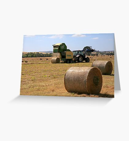 Harvesting at Yan Yean Greeting Card