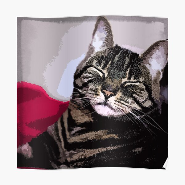 Sleepy Kitty Art Poster