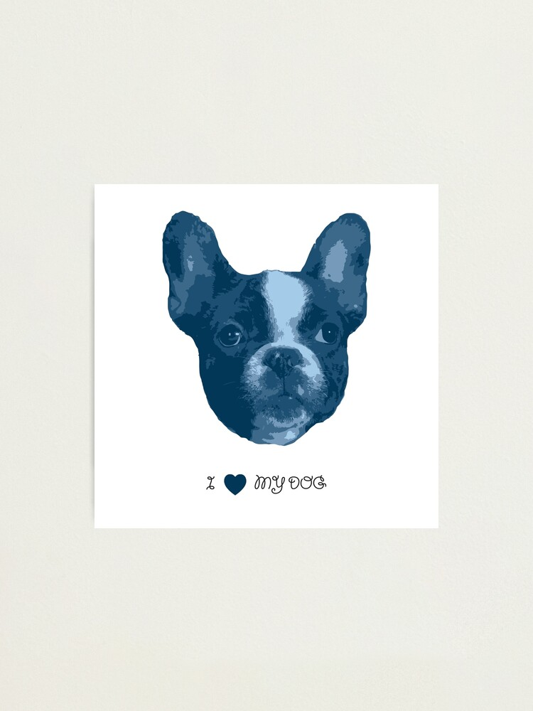Alternate view of I love my dog - French Bulldog (Blue) Photographic Print