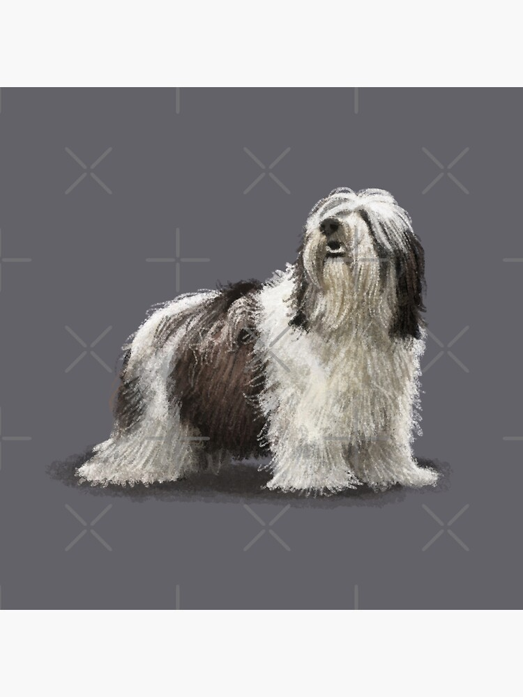 My Best Friend is Polish Lowland Sheepdog Messenger Bag